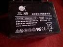 三瑞蓄电池6FM38-X 三瑞蓄电池12V38AH 直流屏专用蓄电池原装正品