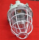 BCD-250防爆灯