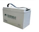 赛特蓄电池BT-HSE-80-12(12V80AH)【易卖工控推荐卖家】
