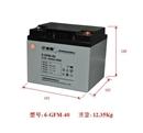 复华蓄电池6-GFM-40(12V,40AH/10HR)