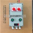防爆断路器两回路防爆配电箱