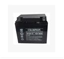 冠军蓄电池np38-12 冠军蓄电池12V38ah 冠军np38-12/12V38ah蓄电池 冠军蓄电池