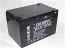 正品冠军电池 NP12-12 冠军12V12AH铅酸免维护ups电源专用直销