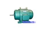 JS126-10 95KW 西玛电机 西安电机厂 正品现货