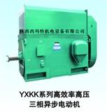 西玛6KV IP23 高压三相异步电机Y4505-6-450