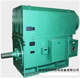 YJTFKK8001-16 800KW 6KV IP54 30-50Hz 西安西玛 高压变频电机