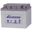 理士DJM1238蓄电池 理士蓄电池 理士蓄电池DJM1238 理士蓄电池12V38ah 江苏理士蓄电池