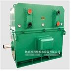 西安西玛电机YKS6301-2 2500KW 6KV IP54高压电机
