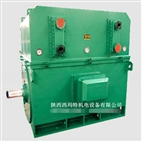 西安西玛电机YKS8006-4 4000KW 10KV IP54高压电机