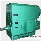 YJTKK8004-6 4000KW 6KV IP54 5-70Hz 西安西玛 高压变频电机