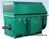 西玛电机 YKK4001-6 200KW 10KV IP54 高压电机 泰富西玛正品