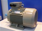 西安西玛 YE3-80M2-4 0.75KW 高效电机 节能电机 YE2电机