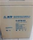 光宇蓄电池6-GFM-65 12V65AH 代理商