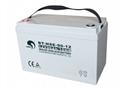 赛特蓄电池BT-HSE-90-12 UPS/EPS电源直流屏