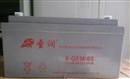 圣润蓄电池6-GFM-65太阳能UPS/EPS电源直流屏仪器专用