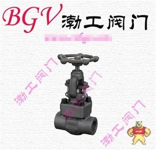 厂家直销API602J11Y锻钢截止阀质量优质低价批发