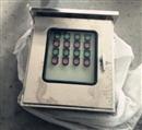不锈钢三防配电箱防水防尘防腐配电箱FXMD-G