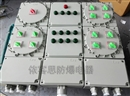 BXD51-6/K125防爆动力配电箱