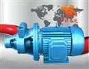 1W型铸铁单级旋涡泵