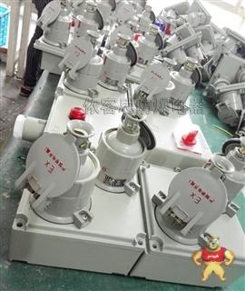 BSK-T防爆检修配电箱