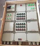 BXD51-12防爆动力配电箱