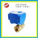 天津天飞海泰 水控专用直通丝扣黄铜4分DN15 微型电动阀