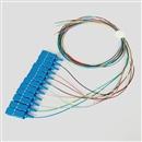 12芯束状尾纤,SC/UPC12芯电信级束状纤