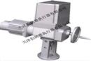 天津伯纳德DKZ-5600YM一体化型电动执行机构
