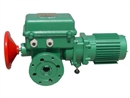 天津伯纳德BS-250+R05/F07系列电动执行机构