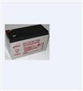 原装艾诺斯华达霍克蓄电池NP7-12华达蓄电池12V7AH免维护蓄电池