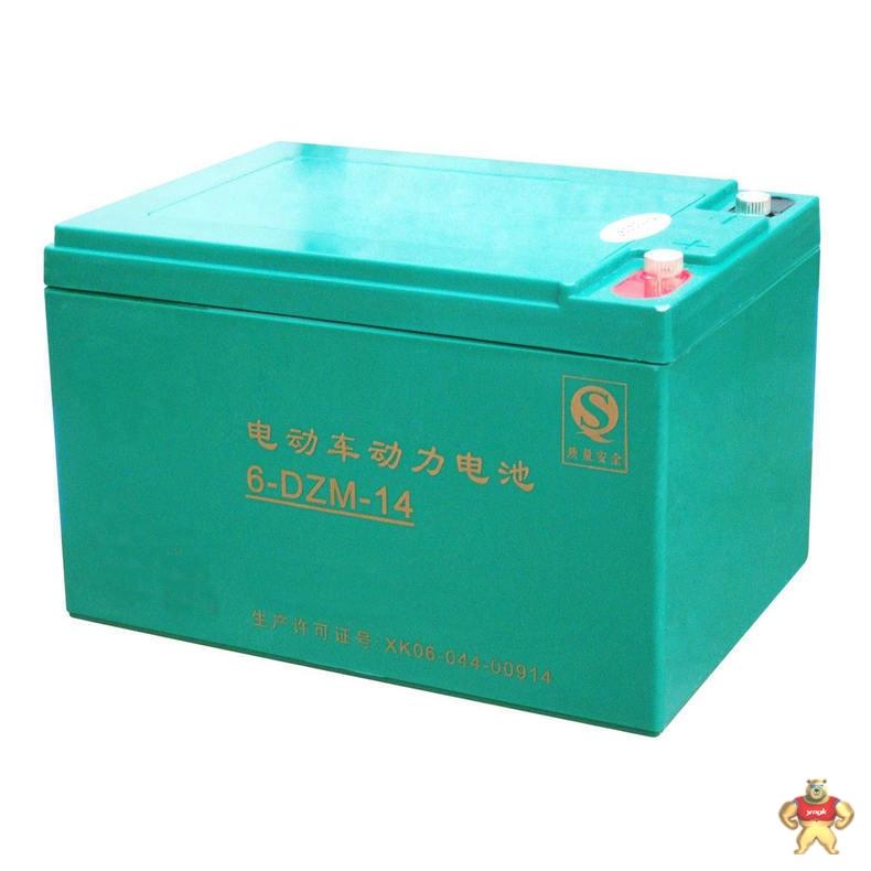 观光车蓄电池 (2)